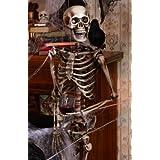 Lifesize Posable Skeleton Halloween Prop Picture
