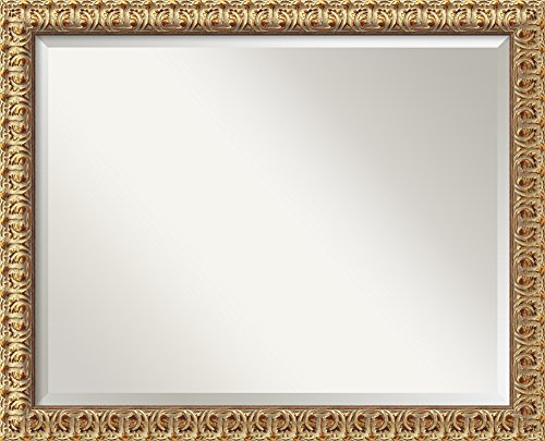 Florentine Gold Mirror - Large Framed front-919810