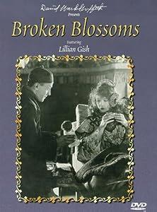 Broken Blossoms [DVD] [2018] [US Import]