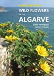 Field Guide to the Wild Flowers of th...