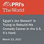 'Egypt's Jon Stewart' Is Trying to Rebuild His Comedy Career in the U.S. It's Hard. | Carol Hills