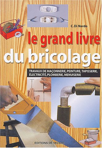 livre le grand livre du bricolage travaux de ma onnerie peinture tapisserie lectricit. Black Bedroom Furniture Sets. Home Design Ideas