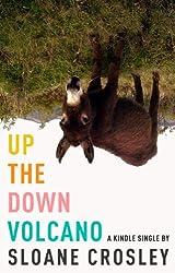 Up the Down Volcano (Kindle Single)
