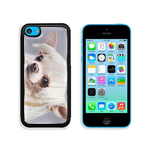 MSD Premium Apple iPhone 5C Aluminum Backplate Bumper Snap Case beautiful dog close up portrait Image ID (Cute And Easy Hairstyles For Halloween)