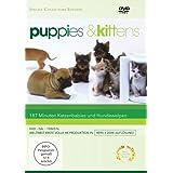 """Puppies & Kittens - Hunde und Katzen [Special Collector's Edition] [Special Edition]von """"-"""""""
