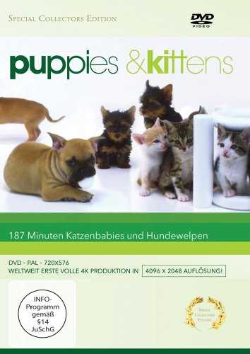 Puppies & Kittens - Hunde und Katzen [Special Collector's Edition] [Special Edition], DVD