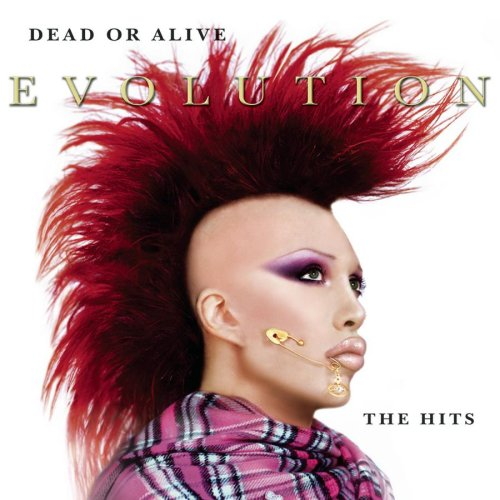 Evolution: The Hits