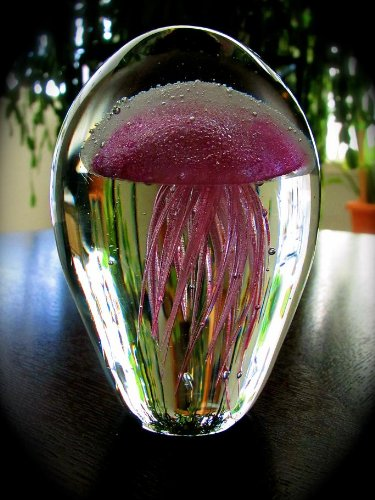 Glowing Jellyfish with LED 3 color Light Base - Pink JellyFish Glows in the Dark Too