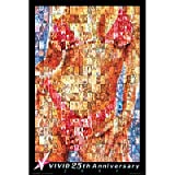 Vivid 25th Anniversary (Mosaic) Art Poster Print - 24x36 custom fit with RichAndFramous Black 24 inch Poster Hangers