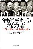 消費される権力者—小沢一郎から小泉純一郎へ