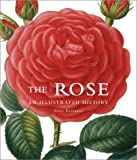 Amazon / Brand: Firefly Books: The Rose An Illustrated History (Peter Harkness)