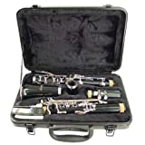 Hisonic Signature Series 2610 Bb Orchestra Clarinet with Case (Color: Black)