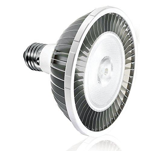 Aurora 18W 120V Led E26 Par38 - 6000K (Cool White Light) Bulbs