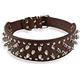 Berry® Brown PU Leather dog collars, Spiked Studded Dog Collars for Pitbull Mastiff Boxer Medium&Large Breeds 7 Colors 5 Sizes,Neck for 13-16""