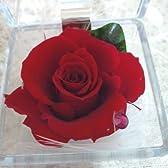 赤い薔薇のプリザーブドフラワーギフトボックス スワロフスキークリスタル宝石箱アレンジ A 赤い薔薇(ルビー) 7月の誕生石 白いギフト箱にリボンギフトラッピング 手提げ袋付 ミニアレンジ プチプラ