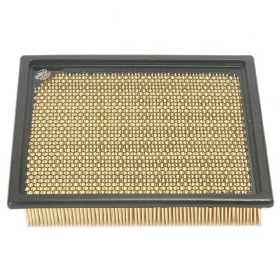 R2C Severe Duty Panel Filter for Razor 900 XP 2014 And Earlier (2014 Razor 900 Xp compare prices)
