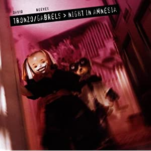 Night in Amnesia [CD on Demand]