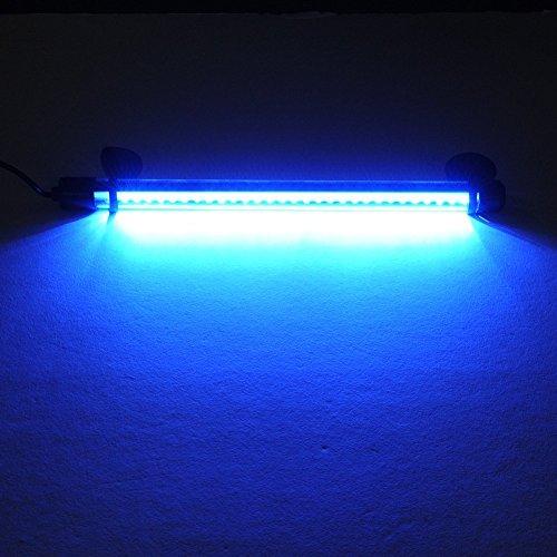 Amzdeal aquarium light waterproof fish tank light 11 inch for Blue light for fish tank