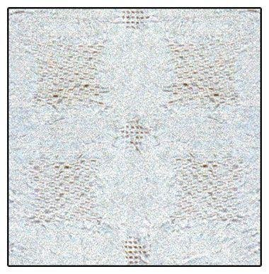 "Natural Color Textured Wedding Ring Design Woven Afghan Throw Blanket 48"" X 60"" front-1046510"