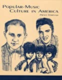 img - for Popular-Music Culture in America book / textbook / text book