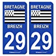 2 Autocollants de plaque d'immatriculation 29 Bretagne - LogoType