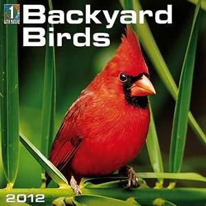 Backyard Birds 2012 Wall Calendar
