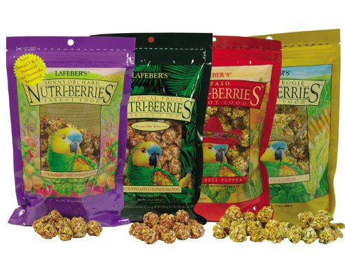 Cheap Lafeber Flavored Nutri-berries – Parrot Variety Pack 4, 10oz Each (519-498)