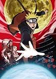 劇場版NARUTO-ナルト- ブラッド・プリズン(完全生産限定版) [DVD]
