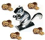 Cute Chromed Metal Nut Cracker Squirr...