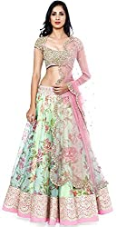 DWM Collection Women's Synthetic Semi-Stitched Lehenga Choli (Green-Pink)