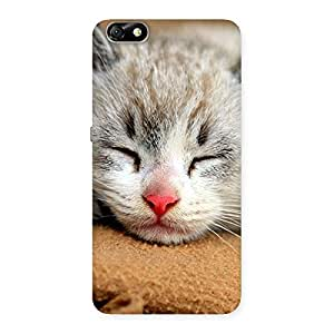 Delighted Premium Cute Sleepings Cat Multicolor Back Case Cover for Honor 4X