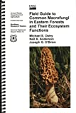 img - for Field Guide to Common Macrofungi In Eastern Forests and Their Ecosystem Functions book / textbook / text book