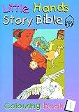 Little Hands (Story Bible) Pb (Book 1)