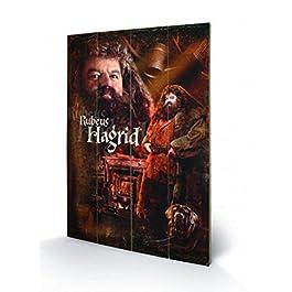 Harry Potter - Hagrid Cuadro De Madera (60 x 40cm)