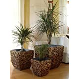 3er Set Wasserhyazinthe Blumenkübel Übertöpfe Pflanzkübel Blumentopf Madras WWB braun 50/40/30cm hoch
