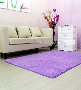 Amazon.com - Super Soft Modern Shag Area Rugs Purple Living Room ...