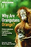 Why are Orangutans Orange? Science Puzzles in Pictures - with Fascinating Answers by New Scientist ( AUTHOR ) Oct-06-2011 Paperback (1846685079) by New Scientist
