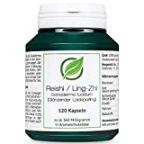 Reishi / Ling Zhi (Ganoderma lucidum) - 120 capsules