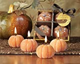 24 Autumn Glow Scented Beaded Thanksgiving Pumpkin Candles-Pumpkin Spice Scented