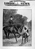 1890 Woodville Horse Riding Protector Child Lady