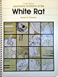 img - for Laboratory Anatomy of the White Rat (Laboratory anatomy series) book / textbook / text book