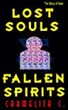 img - for Lost Souls and Fallen Spirits book / textbook / text book