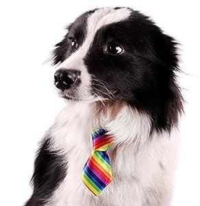 10 Pcs/Pack, GOGO Dog Cat Collar, Neckties, Assorted