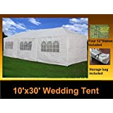 DELTA Canopy – 10'x30′ Party Wedding Tent Gazebo Pavilion Catering Carport Shelter New
