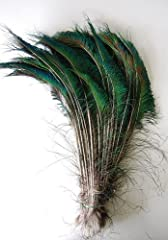 KAYSO 100 Piece Peacock Swords Natural Feathers, 10 to 14
