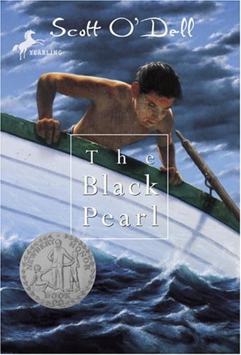 The Black Pearl Free Book Notes, Summaries, Cliff Notes and Analysis