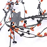CWI Gifts Spooky Mix Pip Wreath, 14-Inch
