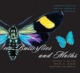100 butterflies and moths