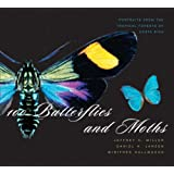 """100 Butterflies and Moths: Portraits from the Tropical Forests of Costa Ricavon """"Jeffrey C. Miller"""""""