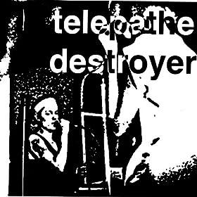 Destroyer (Dave Sitek Mix)